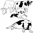 Cow Collection — Stock Vector #3247075