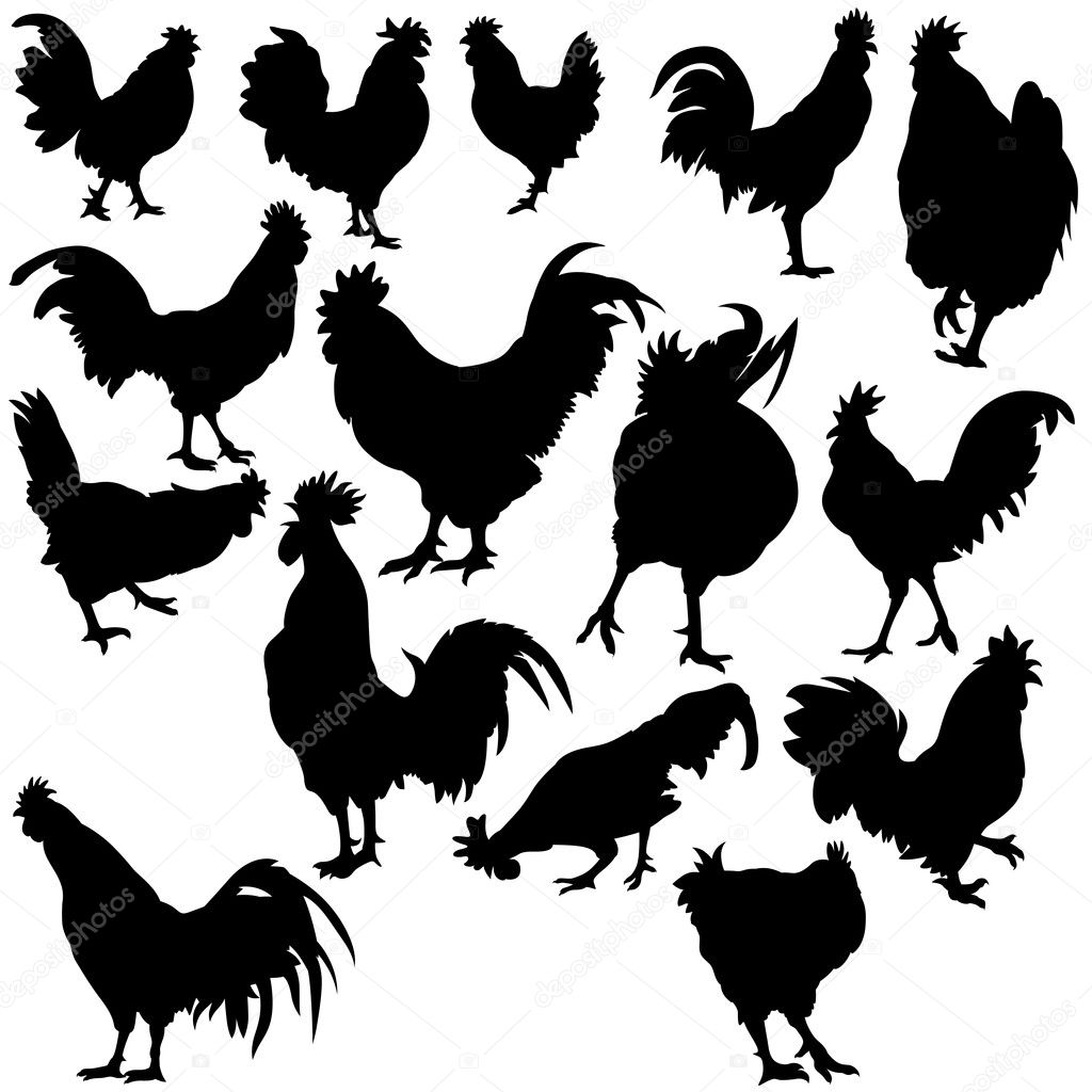 Rooster Silhouettes - Black illustration, vector — Stock Vector #3246958