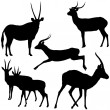 Antelope Silhouettes — Stock Vector #3253639