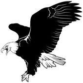 Bald Eagle — Vector de stock