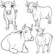 Cow Collection — Imagen vectorial