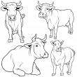 Cow Collection — Stock Vector #3271041