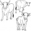 Cow Collection - Stock Vector