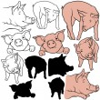 Pig Collection — Stock Vector #3279796