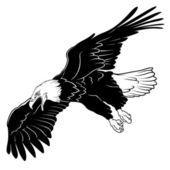 Vliegende bald eagle — Stockvector