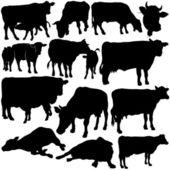 Cow Silhouette Collection — Stock Vector