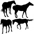 Stock Vector: Horse Silhouette Collection
