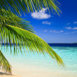 Tropical Paradise at Maldives — Stock Photo #2819573
