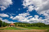 Dream countryside — Stock Photo