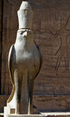 Horus — Stock Photo