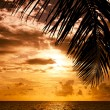 Maldivian Sunset - Stock Photo
