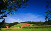 Sumer landscape — Stock Photo