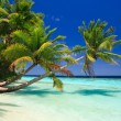 Tropical Paradise at Maldives — Stock Photo #3165577