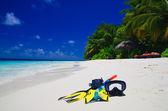 Sahilde yüzgeçleri ile dalış maske — Stok fotoğraf