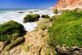 アルガルヴェ ポルトガル旅行ターゲット verry 素敵なの一部 — ストック写真