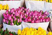 Amsterdam flowers market — Stock Photo