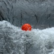 Stock Photo: Ball in water