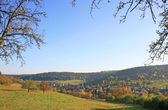 Autumnal Black Forest — Stock Photo