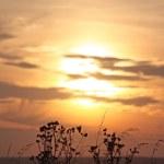 Lovely Evening Ambiance — Stock Photo