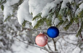 Christmas Tree Ball — Stock Photo
