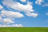 Meadow with Clouds — Stock Photo