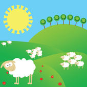Summer landscape with white sheeps — Stock Photo