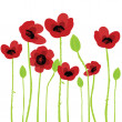 Poppy over white background — Stock Photo
