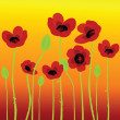 Poppies on orange background - Stock Photo
