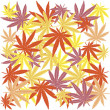 Seamless with colored marijuana leaves — Stock Photo