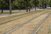 Tramway rails in the city. — Stock Photo
