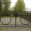 Iron cemetery gate. - Stock Photo