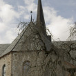 Stock Photo: Church and old tree.