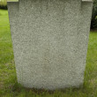 Blank tombstone — Stock Photo