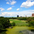 Stock Photo: Central Park NYC