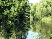 Summer,. River — Stock Photo