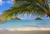 Mokulua islands off lanikai beach — Stock Photo