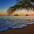 Pacific sunrise at lanikai - Stock Photo