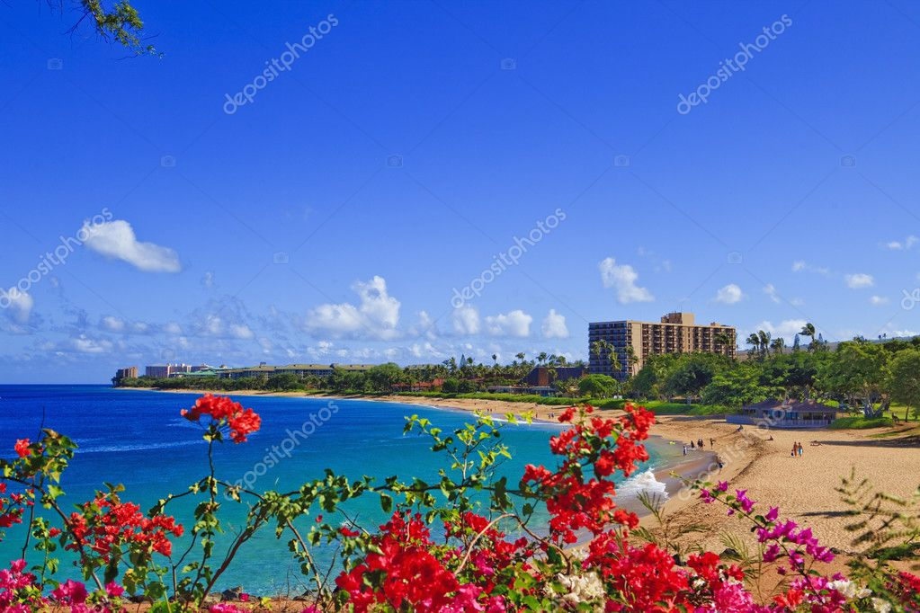Kahana beach, maui, hawaii — Stock Photo #2865282