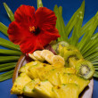 Selection of tropical fruits — Photo