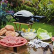 Backyard bar-b-que — Stock Photo