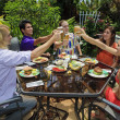 Friends at backyard bar-b-que — Stockfoto #2946615