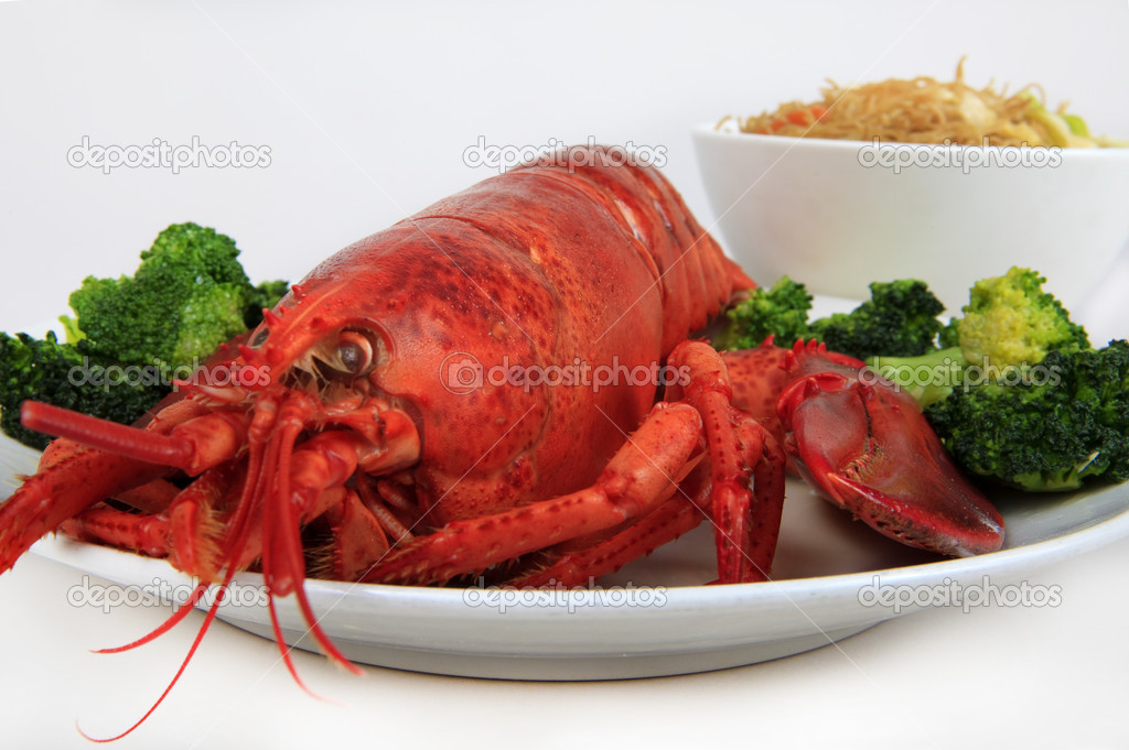 Cooked maine lobster served with brocolli and noodles — Stock Photo #3038642
