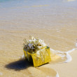 A brightly wrapped present floats to shore — Foto de Stock