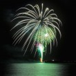 Fireworks display on the fourth of july — Stock Photo