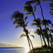Pacific sunset at kaanapali beach — Stock Photo #3791466