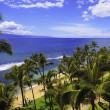 Kaanapali beach on maui — Stock Photo