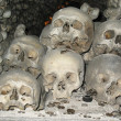 Humam skulls and bones — Stock Photo #2855921