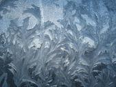 Frozen window-3 — Stock Photo