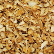 Stock Photo: Dried celery root background
