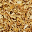 Dried celery root background — Stock Photo